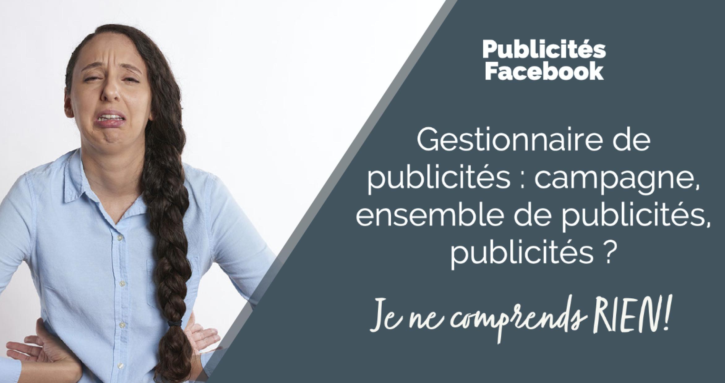 gestionnaire de publicites facebook